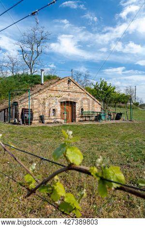 wine cellar, Palava region, South Moravia, Czech Republic