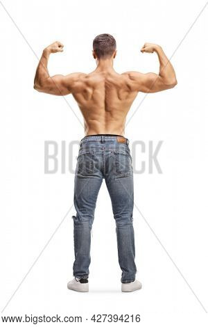 Full length rear view shot of a topless man in jeans flexing muscles isolated on white background