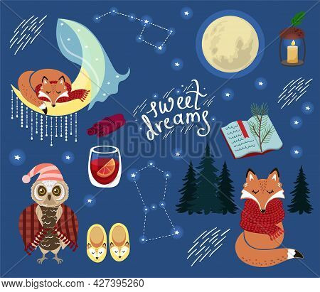 Fox, Owl And Moon In The Night And Lettering. Night Life Of The Forest. Cute Set Of Elements.