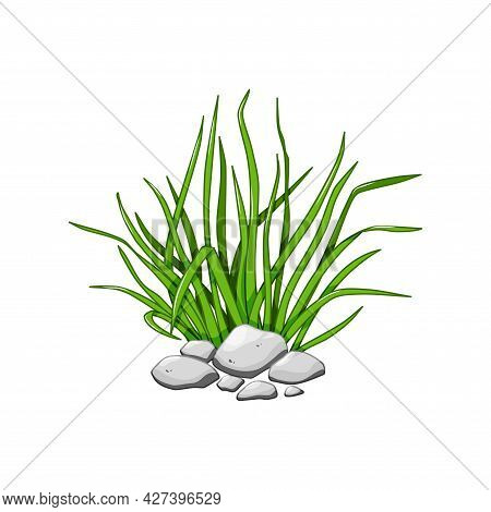 Green Grass In The Rocks. Cartoon Vector Illustration Isolated On A White Background.