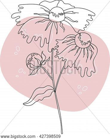 Flower With A Black Outline On A Pink Abstract Background. Vector Botanical Illustration Modern Styl