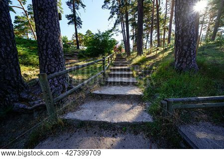 Footpath With Steps In The Forest With Tall Trees And Sun Rays. Navacerrada.