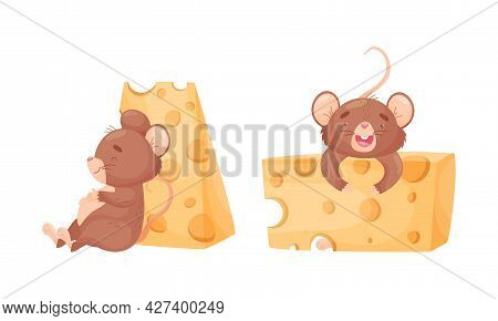 Cute Mouse Character Sitting Near Huge Cheese Slab Vector Set