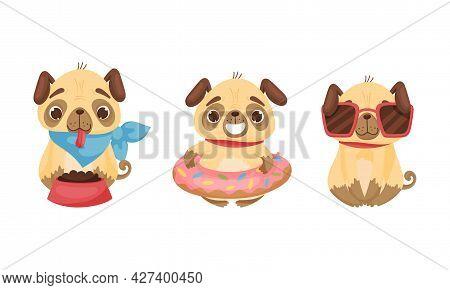 Cute Pug Dog Puppy Feeding And Wearing Sunglasses Vector Set