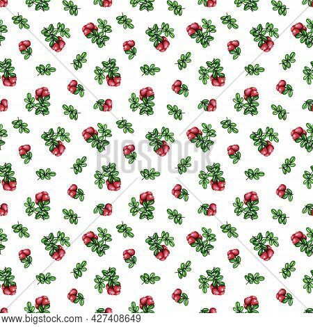 Watercolor Cowberry, Cranberry Seamless Pattern. Red Forest Berries Bunch And Green Leaves On White.