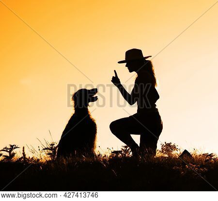 Trainer Teaching An Obedient Happy Dog To Sit In The Grass. Animal Pet Obedience Training Silhouette