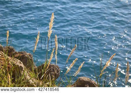 Beautiful Summer Seascape In Sveti Stefan. Montenegro.