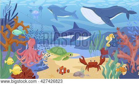 Colorful Cartoon Sea Animals Underwater Panorama Vector Flat Illustration. Tropical Ocean Bottom