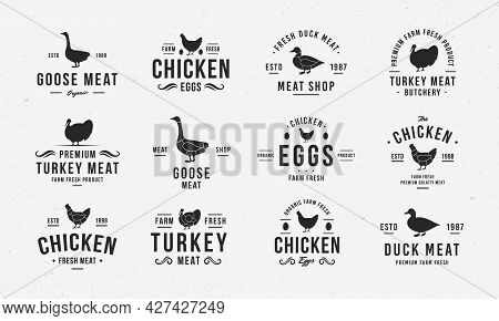 Poultry Logo Set. Vintage Hen, Goose, Duck, Turkey Logo Templates With Silhouettes. Poultry Emblems