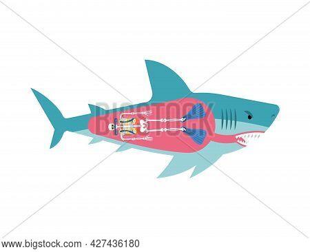 Diver Skeleton Inside Shark. Shark And Diver. Marine Predator Ate Frogman. Diver's Death