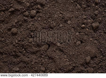 Soil Background, Soil Texture, Black Soil With Manure For Plant Growth