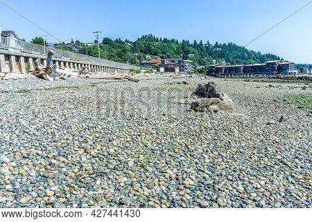 Rocky Shoreline At Low Tide In West Seattle, Washington.
