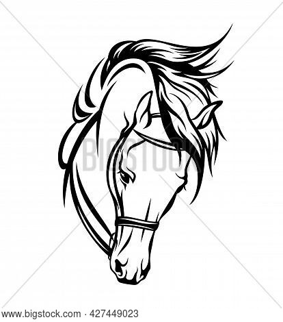 Bridled Horse Head With Flying Mane Black And White Vector Outline Portrait