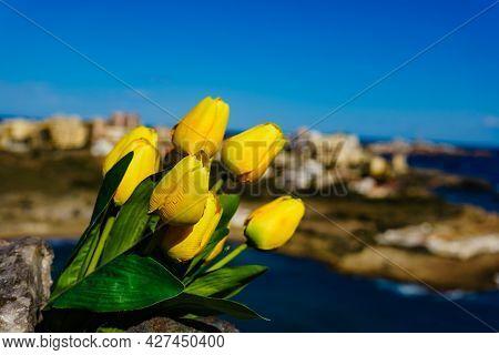 Mediterranean Sea Coast Landscape With Yellow Tulips Bunch, Spanish Rocky Coastline In Murcia Region