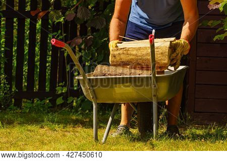 Man Working With Firewood, Unloading Wood From Wheelbarrow. Preparation For Winter.