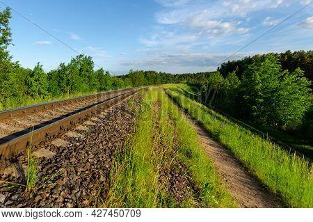 Railway In The Summer Evening Forest. Summer Evening