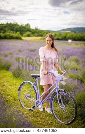 Woman In Pink Dress With Retro Bicycle In Lavender Field, Czech Republic