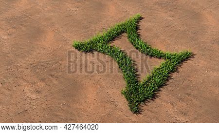 Concept conceptual green summer lawn grass symbol shape on brown soil or earth background, sign of gemini zodiac sign. 3d illustration symbol for esoteric, mystic, the power of prediction of astrology