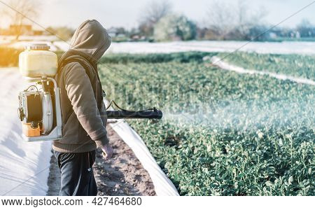 A Man Sprays A Farm Field. Protection Of Plants. Pesticides And Fugicides In Agroindustry. Health Ha