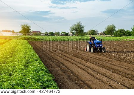 The Farmer Works The Field After Harvest. Blue Tractor On A Farm Field. Milling Soil, Crushing Befor