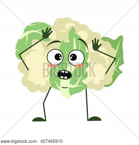 Cute Cauliflower Character With Emotions In A Panic Grabs His Head, Face, Arms And Legs. The Funny O