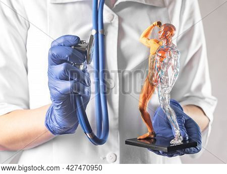 Checkup Of Circulatory And Muscular Systems Of Human Body. Healthcare Concept. Healthy Muscles And C
