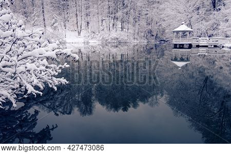 A Fresh Fallen Snow Flocks The Trees Surrounding This Winter Pond And Gazebo In This Tranquil Winter