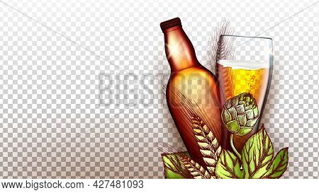 Beer Drink Product Glass And Blank Bottle Vector. Wheat And Malt Plant Natural Ingredient For Brewin