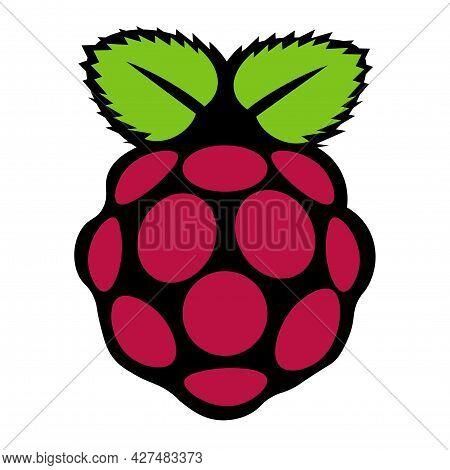 Raspberry Fruit Vector Illustration On A White Background