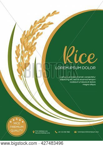 Template Label And Icons For Rice Packaging Product Design With Green And Gold Paddy Rice Vector Des