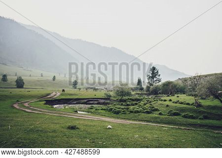 Green Village Landscape With Trees And Vegetation Near Dirt Road In Countryside On Background Of Hig