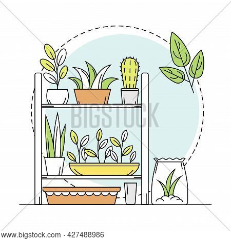 Gardening And Horticulture As Plant Cultivation With Flowerpot Rested On Rack With Growing Botany Li