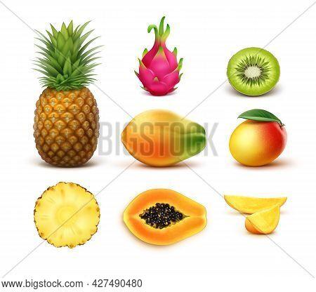 Vector Set Of Whole And Half Cut Tropical Fruits Pineapple, Kiwi, Mango, Papaya, Dragonfruit Isolate