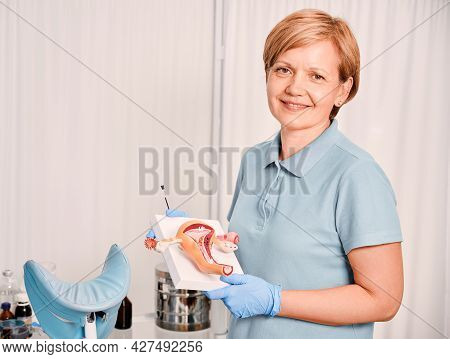 Lovely Female Gynecologist In Blue Shirt Looking At Camera And Smiling While Holding Uterine Ovary A