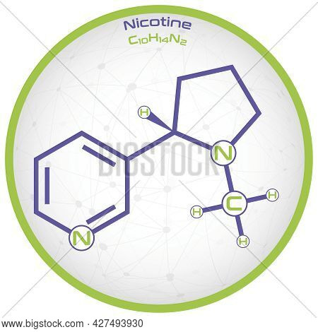 Large And Detailed Infographic Of The Molecule Of Nicotine