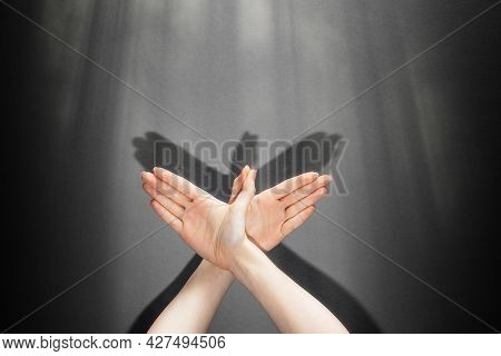 Shadow Theater. A Female's Hands Shows The Figure Of A Dove. On The Dark Wall The Shadow Of Hands In