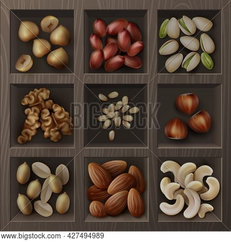 Vector Set Of Different Nuts Hazelnuts, Pistachio, Peanuts, Cashew, Cedar And Walnuts Top View In Wo