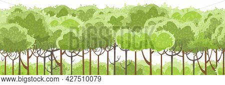 Thin Young Trees And Bushes. Forest. Level Green Rural Hills. A Beautiful And Graceful Landscape. Se