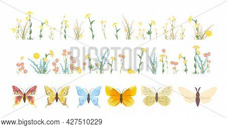 Set. Meadow With Wildflowers. Butterflies. Grass Close-up. Wild Green Rural Plants. Cartoon Style. F
