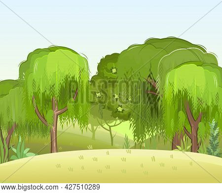 Summer Forest Landscape. Light Foggy Thickets. Dense Foliage. Green Trees View. Cartoon Flat Style.