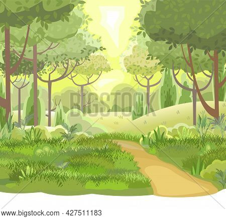 Road. Amusing Beautiful Forest Landscape. Cartoon Style. Foliage. The Path Through The Hills With Gr