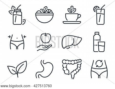 Detox And Cleanse Related Editable Stroke Outline Icons Set Isolated On White Background Flat Vector