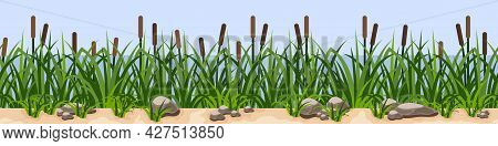 Reeds In Green Grass Near River Or Lake, Rock Stones On Sand. Repeat Seamless Landscape For Cartoon