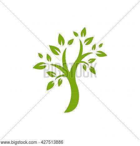 Green Flat Tree With Leaves Isolated On White. Organic Symbol. Natural, Fresh, Eco Logo. Wild Nature