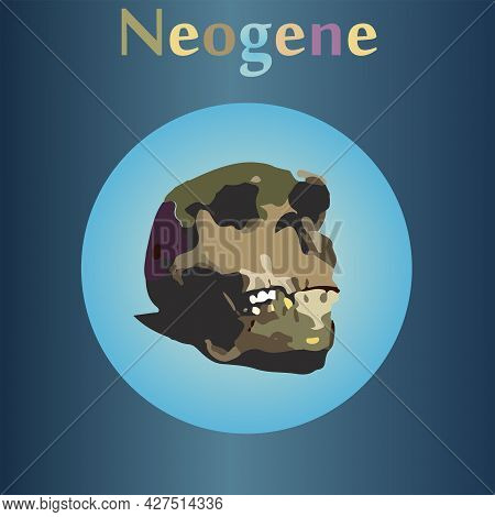 Neogene In The History Of The Earth. The Emergence Of Man. Human Skull.