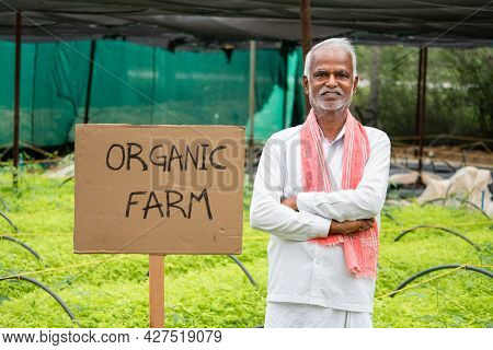 Concept Showing Of Farmer In Support Of Using Organic Farming - Farming Carrying Organic Farming Boa