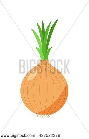 Vector Illustration Of An Onion With Green Onion Feathers. Vegetable Icon For The Store, Salad.