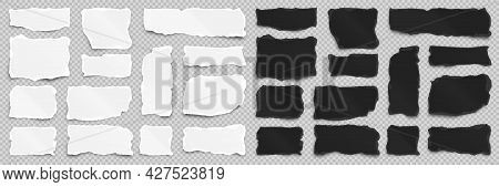 Ripped White And Black Paper Strips On Transparent Background. Realistic Crumpled Paper Scraps With