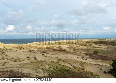 Amazing View Of Sandy Grey Dunes At The Curonian Spit.