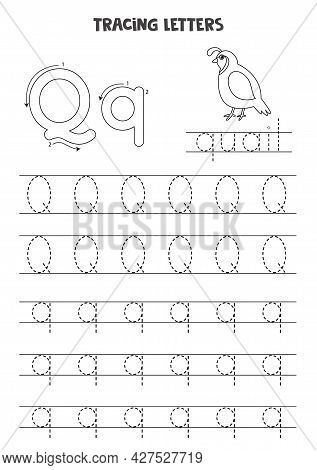 Trace Letters Of English Alphabet. Uppercase And Lowercase Q. Handwriting Practice For Preschool Kid